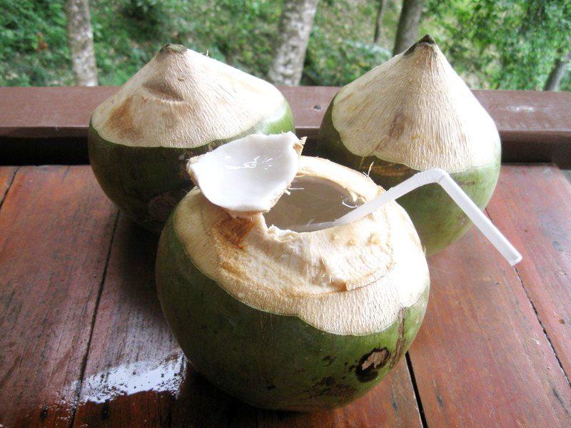 Польза кокосовой воды для здоровья