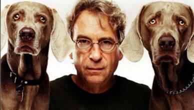 Чудесный мир собак Уильяма Вегмана