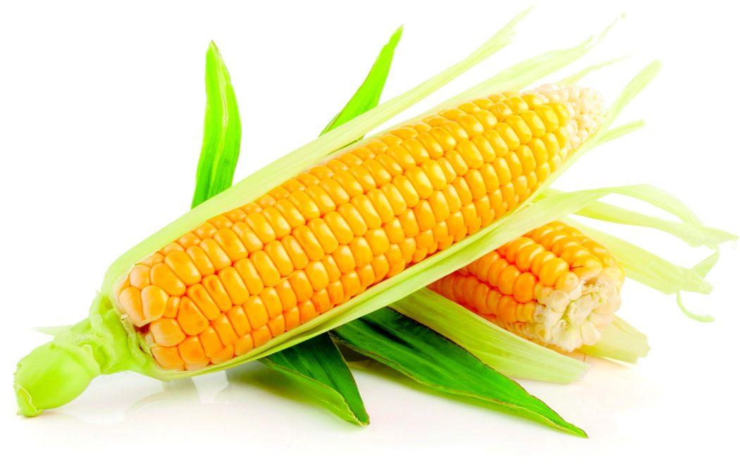 Сколько и как правильно варить кукурузу