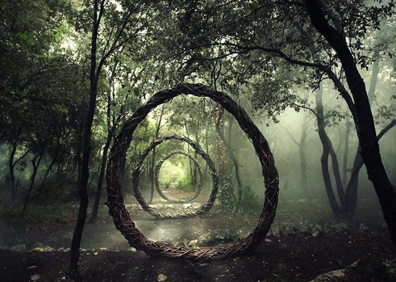 Лес Хойя Бачу — Бермудский треугольник Трансильвании