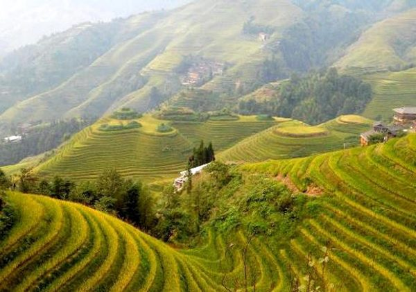 Китайская «Деревня гномов»