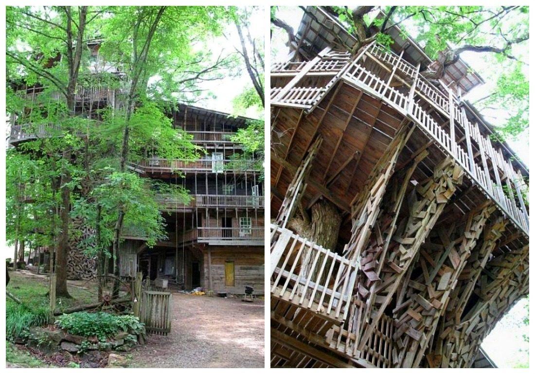 Самый большой в мире дом на дереве