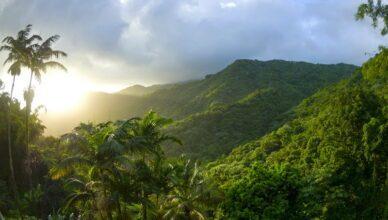 затерянный город в джунглях Эквадора