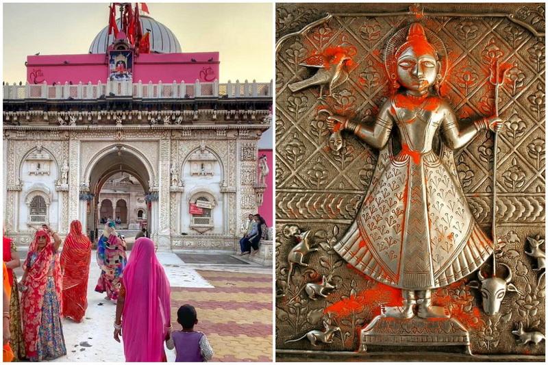 Почему в индийском храме Карни Мата почитают крыс
