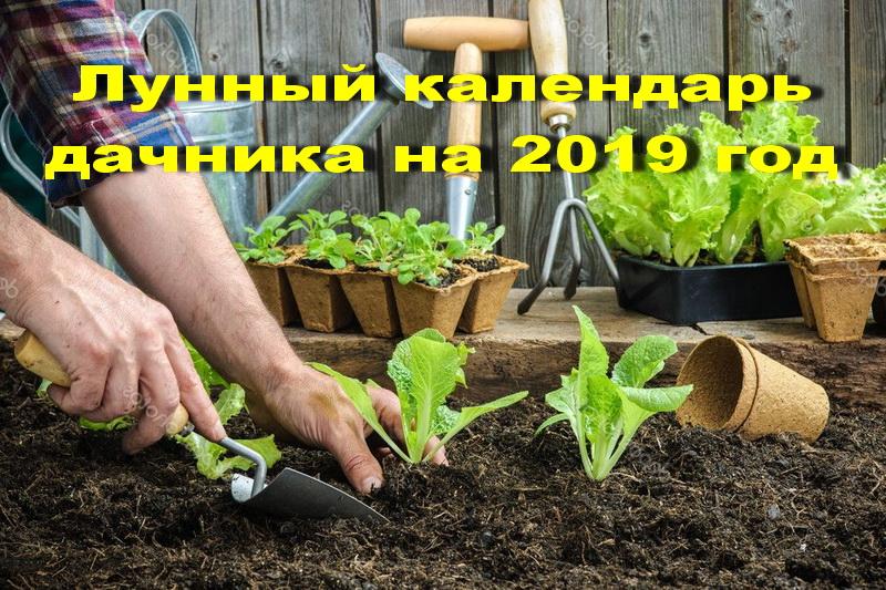 Лунный календарь дачника на 2019 год