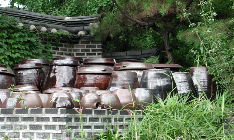 Что такое кимчи: история, польза, как приготовить