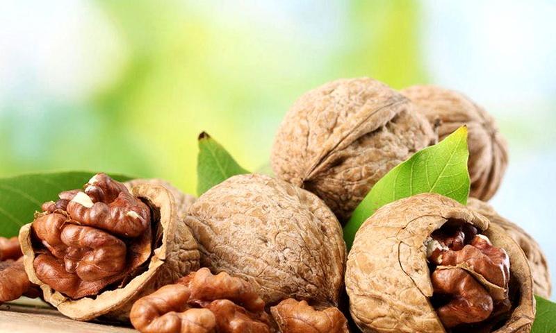 Магические свойства грецкого ореха: гадания и амулеты