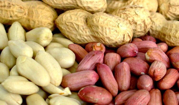 Польза арахиса для здоровья человека
