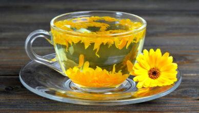 Польза чая с календулой: рецепты приготовления