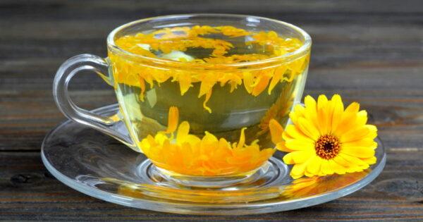 Чай календулы применение