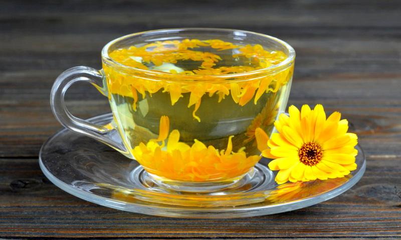 Польза чая с календулой рецепты приготовления