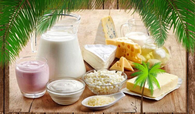 Как проверить творог и сыр на наличие пальмового масла