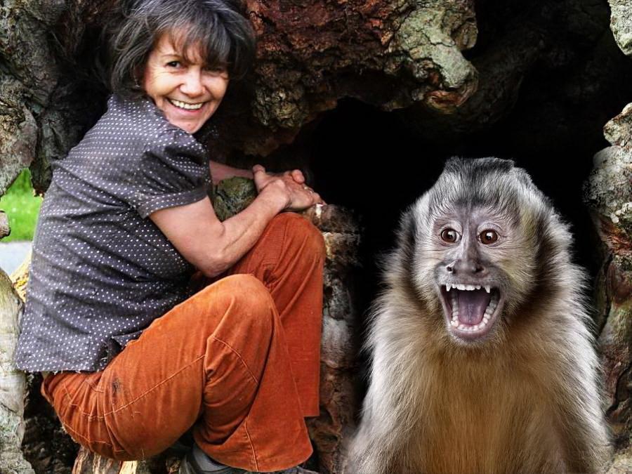 Марина Чапман — девочка, воспитанная обезьянами
