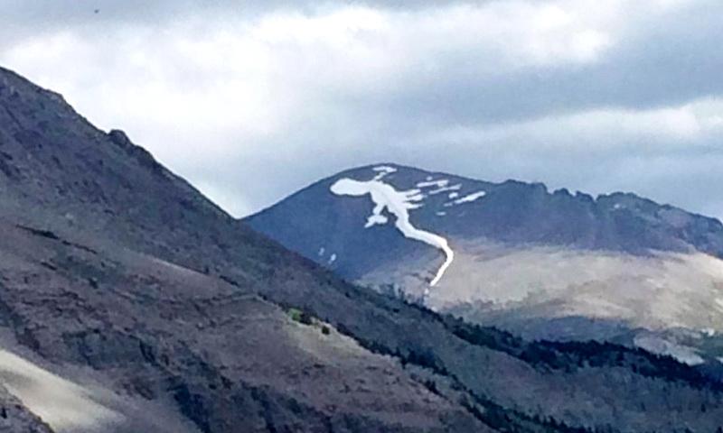 снег в горах похож на ящерицу