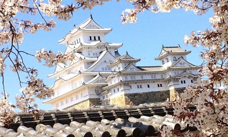 Японский замок весной