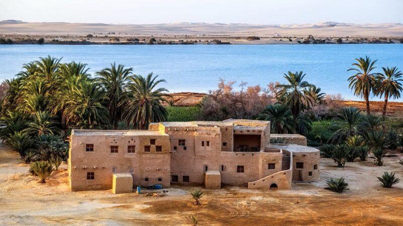 Оазис Сива — удаленная жемчужина Египта