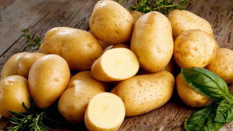Как правильно хранить и готовить картофель