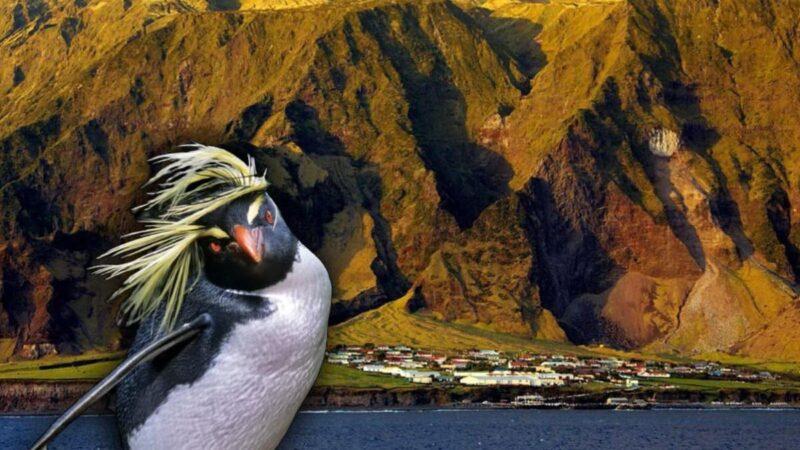 Тристан-да-Кунья — самый удаленный обитаемый остров на Земле