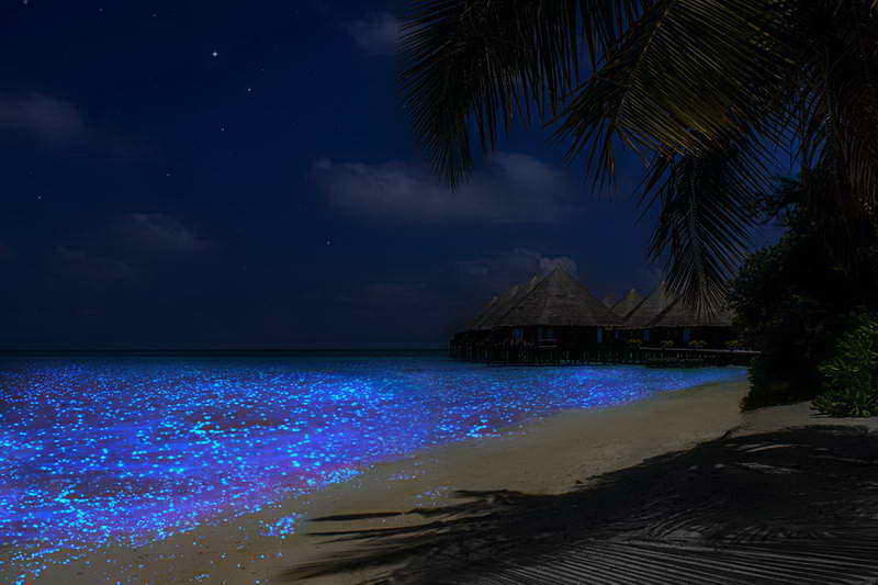 Пляж острова Ваадху