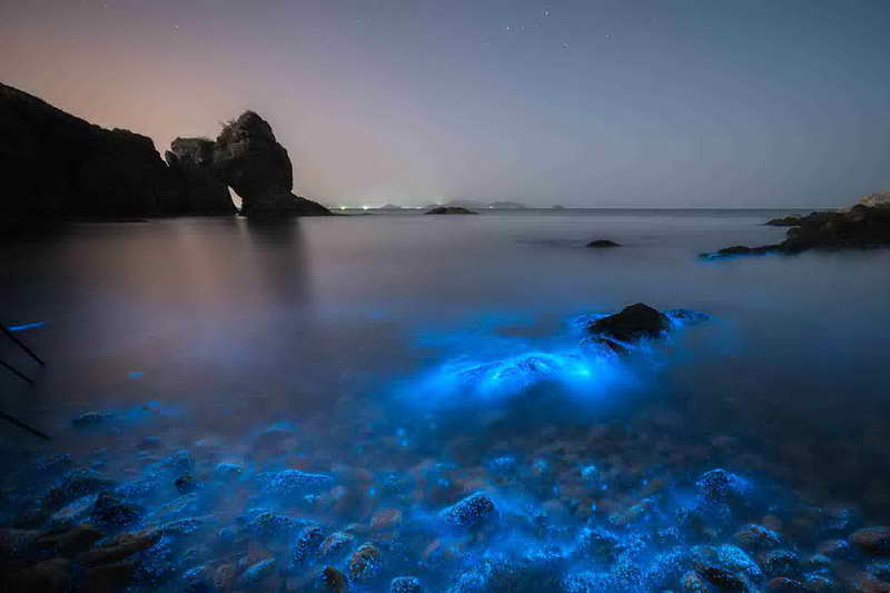 Светящееся море