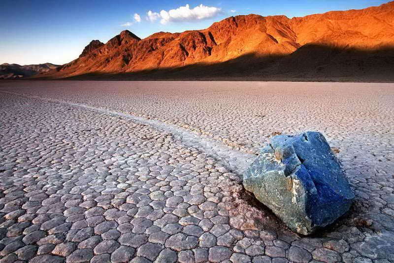 Живые камни Калифорнии