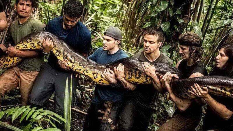 16 причин держаться подальше от джунглей